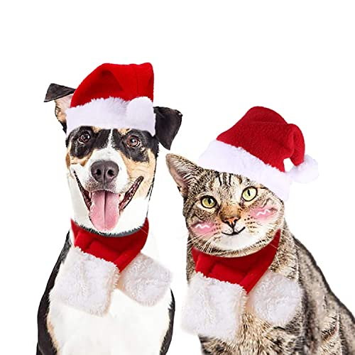 e58e64a773ca0 Legendog Cat Christmas Costume
