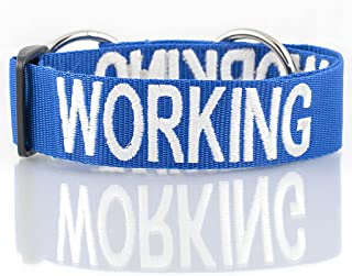 WORKING Blue Color Coded L-XL Semi-Choke Dog Collar (Do Not Disturb) Prevents Accidents by Warning others of Your Dog in A...