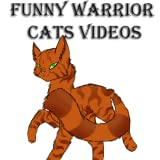 Funny Warrior Cats Videos
