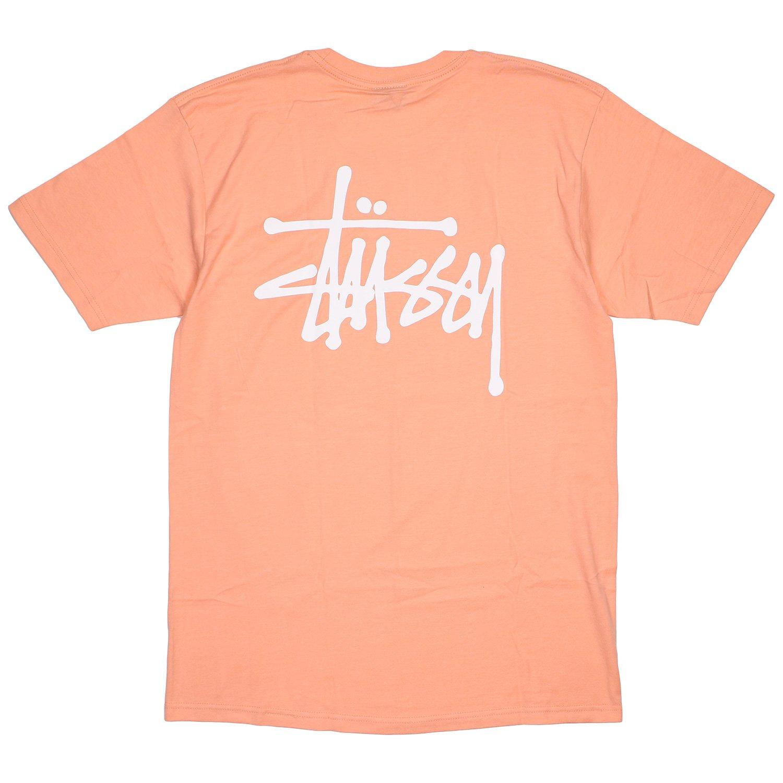 (ステューシー) STUSSY BASIC STUSSY (SS:TEE)(1904181-SM) Tシャツ 半袖 カットソー ベーシクロゴ 国内正規品