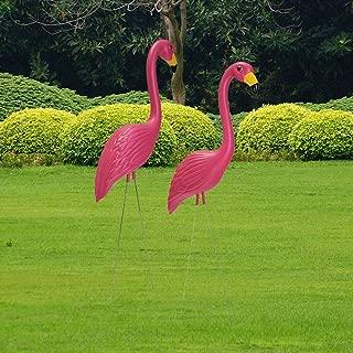 Amazon.es: flamenco rosa: Jardín