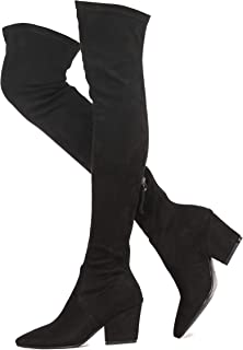 Shoe'N Tale Women's Chunky Heel Back Zipper Sexy Pointed Toe Over The Knee Thigh High Boots (6.5,Black)