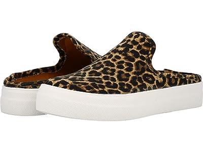 DV Dolce Vita Rica (Leopard) Women