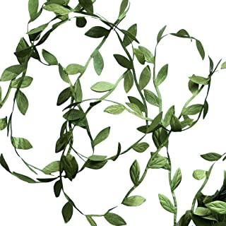 Best Hecaty 132 ft Olive Green Leaves Leaf Trim Ribbon for Baby Shower DIY Craft Party Wedding Home Decoration Review