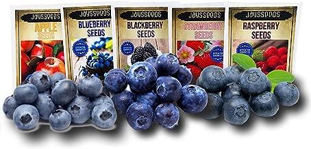 Fruit Combo Pack Raspberry, BlackBerry, Blueberry, Strawberry, Apple 975+ Seeds UPC 695928806584 & 3 Free Packs of Blueberry Seeds