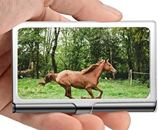 Professional Business Card Holder Stainless Steel,Grass Brown Field Gallop Credit Card ID Case/Holder/Cards Case