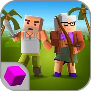 Cube Island Survival 3D Online