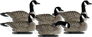 Best dakota canada goose decoys Reviews