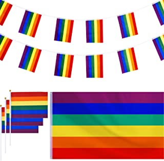 Hestya 150 by 90 cm Large Polyester Hanging Rainbow Gay Lesbian Flag with 1 Pieces Banners Bunting Flags, and 12 Pieces Sm...