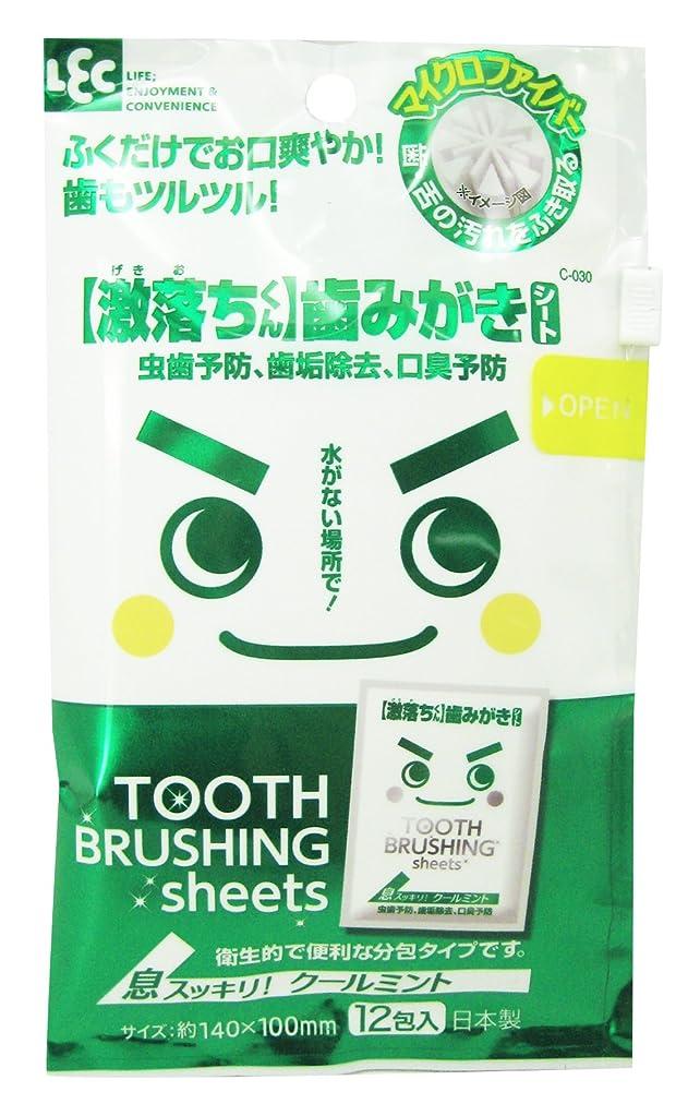 化学薬品割るうまれた【激落ちくん】歯みがきシート 12包