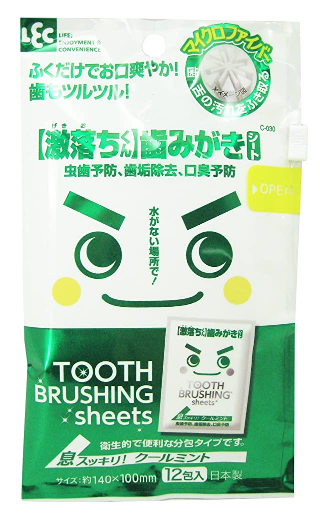 側溝遺伝的味方【激落ちくん】歯みがきシート 12包