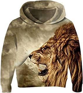 Unisex Child Hoodie 3D Printed Fleece Casual Novelty Pullover Hooded Sweatshirt for Boys Girls Age 3-14