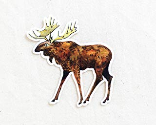 Moose Animal Sticker - Waterproof Vinyl Sticker - Adventure Sticker - Camping and Hiking Gear - Water Bottle Decal - Car Decal