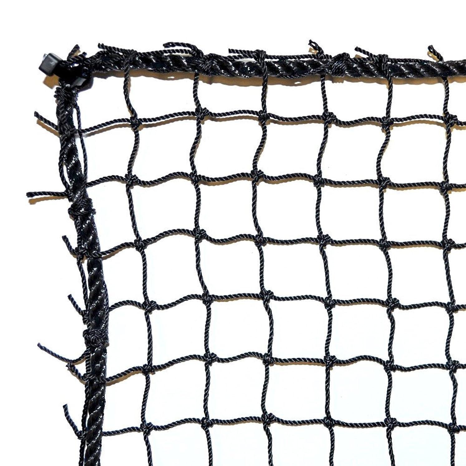 Dynamax Sports Golf Practice/Barrier Net, Black, 10X10-ft pjkpfhqcd8676287