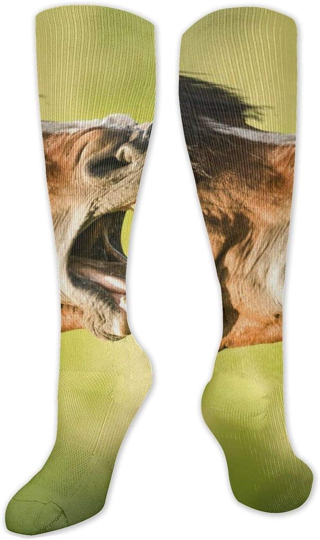 Horse Sing Knee High Socks Leg Warmer Dresses Long Boot Stockings For Womens Cosplay Daily Wear