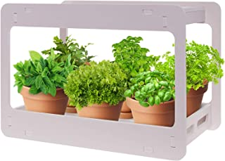 Extra Wide LED Indoor Herb Garden - at Home Stackable Desk Planter Tabletop Growing System w/Automatic Timer, Grow Herbs, ...