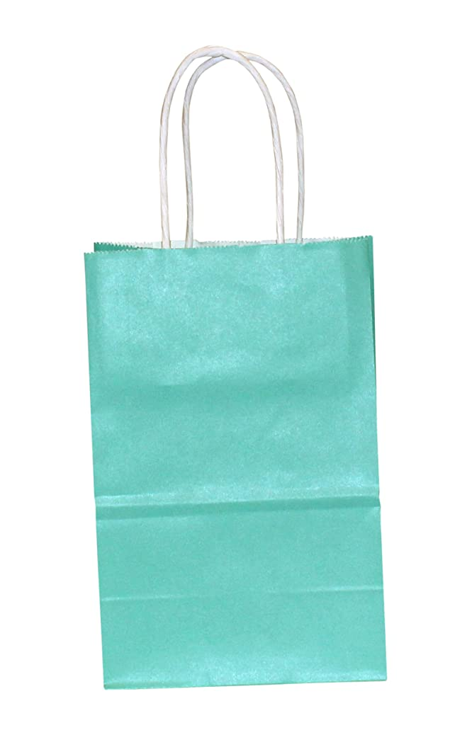 Premier Packaging AMZ-204003 15 Count Colors on White Shopper Gift Bag, 5.25 by 8.25-Inch, Turquoise