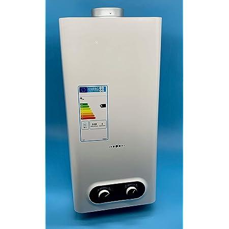 Iglobalbuy 12L LPG Calentador de agua Acero inoxidable ...