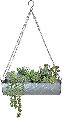 TrustBasket Ivy Single Level Hanging Planter