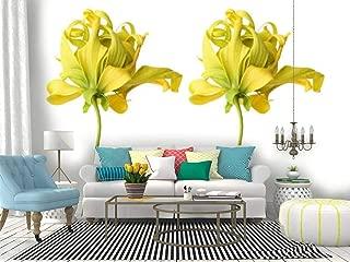 Best ylang ylang flowers photos Reviews