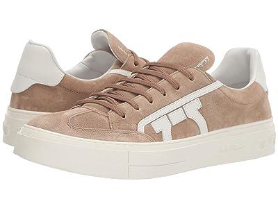 Salvatore Ferragamo Borg 2 Sneaker (Cotton) Men
