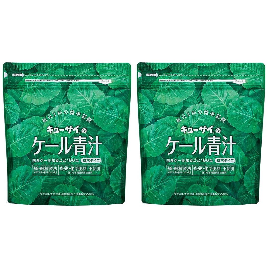 キャップレクリエーション兵隊キューサイ青汁420g(粉末タイプ)2袋まとめ買い/キューサイ ケール青汁【1袋420g(約1カ月分)】