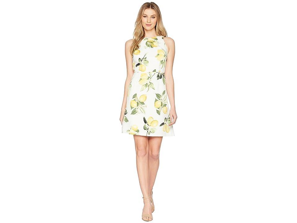 Adrianna Papell Fresh Lemon A-Line Dress (Yellow Multi) Women