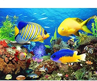 Paint by Numbers Tropical Fish Kits for Adults DIY Digital Oil Painting by Number for Kids Beginner 16X20 inch Number Pain...