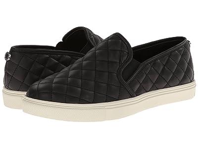 Steve Madden Ecentrcq Sneaker (Black) Women