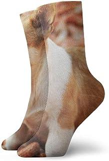 OUYouDeFangA, OUYouDeFangA - Calcetines Cortos de algodón para Perros, para Yoga, Senderismo, Ciclismo, Correr, fútbol