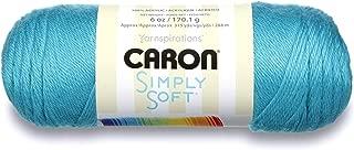Caron Simply Soft Brites Yarn, 6 oz, Blue Mint, 1 Ball