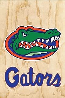 Gators Florida 17