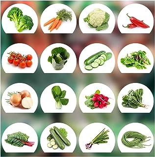 Prademir Gemüse Samen Set - 16 Gemüse Sorten aus Portugal | 100% Natur Saat Keine Chemie, Gentechnik, künstliche Wachstums-Helfer