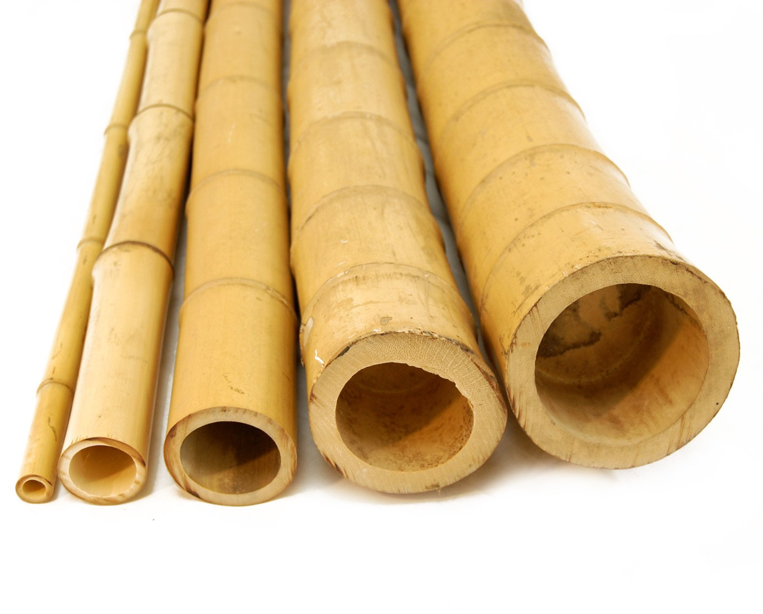 Forever Bamboo Bamboo Poles 20