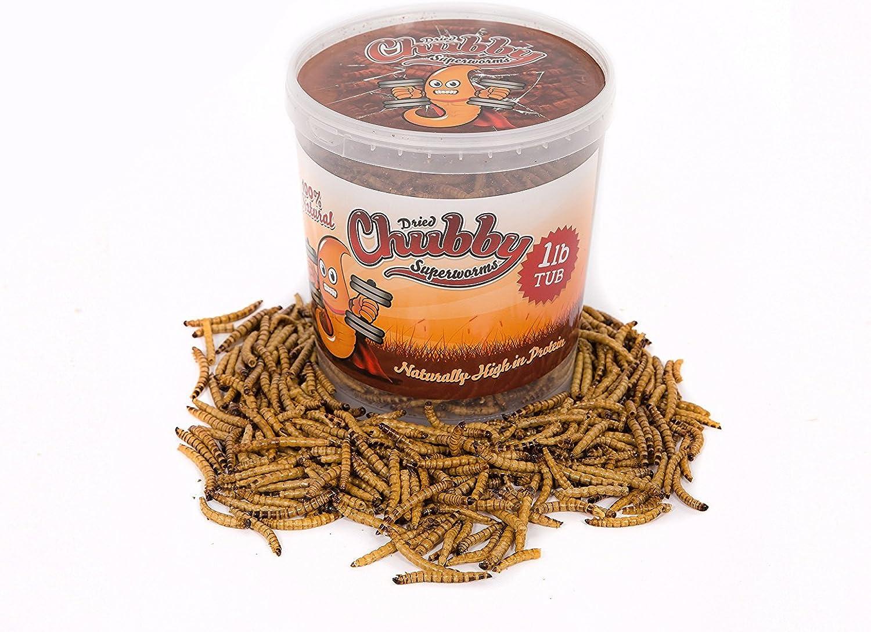 Chubby Dried Super Worms 1lb Tub