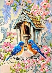 AIRDEA DIY 5D Diamond Painting Kits for Kids Full Drill Art Craft Crystal Rhinestone Embroidery for Home Wall Décor Flowers Birds House 30X40cm
