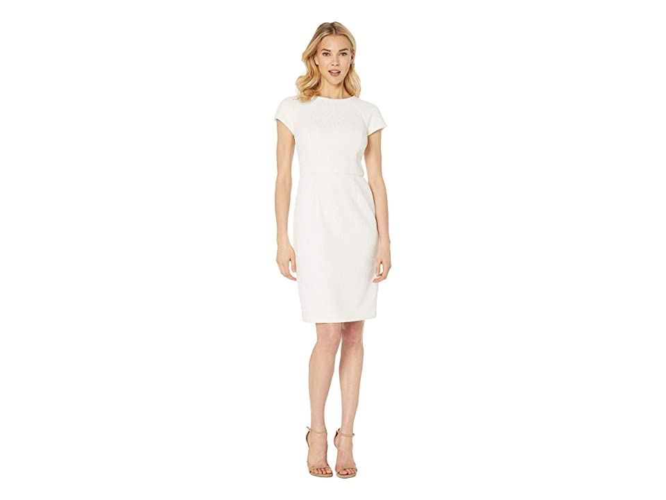 LAUREN Ralph Lauren 159E Bonded Scuba Lace Pollock Short Sleeve Day Dress (Mascarpone Cream) Women