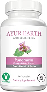 Pure Punarnava Root Powder in Vegetarian Capsules - Ayurvedic Punarnava Supplement - Boerhavia Diffusa Pills for Heart, Liver, Kidney Support - Purnarnava Kidney Detox - 30 Day Supply (60 Capsules)
