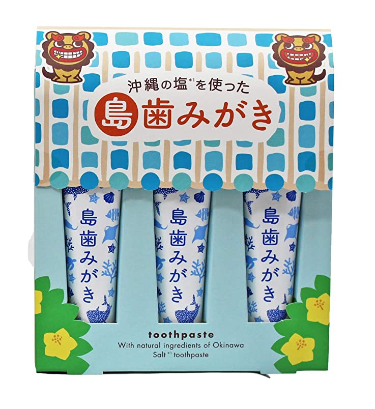 子音降伏開発沖縄の塩を使った島歯みがき (藍色) 15g×3本入り
