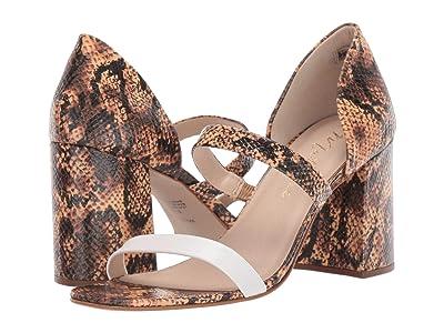 Matisse Valencia (Tan Snake Leather) Women