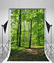 Laeacco 3x5ft Vinyl Backdrop Typical Czech Green Forest Spring Photography Background Green Trees and Path Scene Natural Background Children Girls Photo Portraits Backdrop