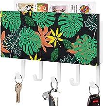Crochet de clé fixé au mur, trieur de courrier, décor à la maison de pétale d'orange de feuille verte lumineuse pour la pi...