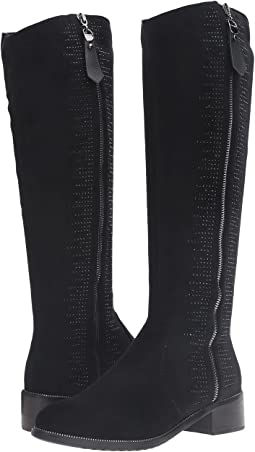 Spring Step - Blackenbury