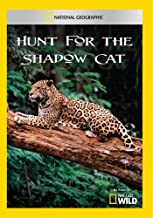 national geographic shadow cats