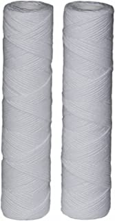 EcoPure EPW2S Water Filter, White