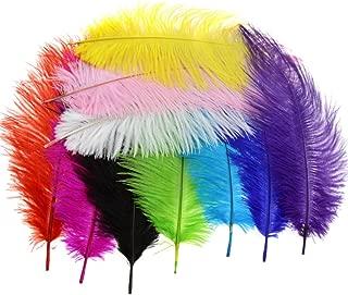 10PCS Multi Colours Artificial Feathers Arts Crafts 10