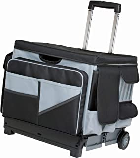 Best canvas rolling cart Reviews