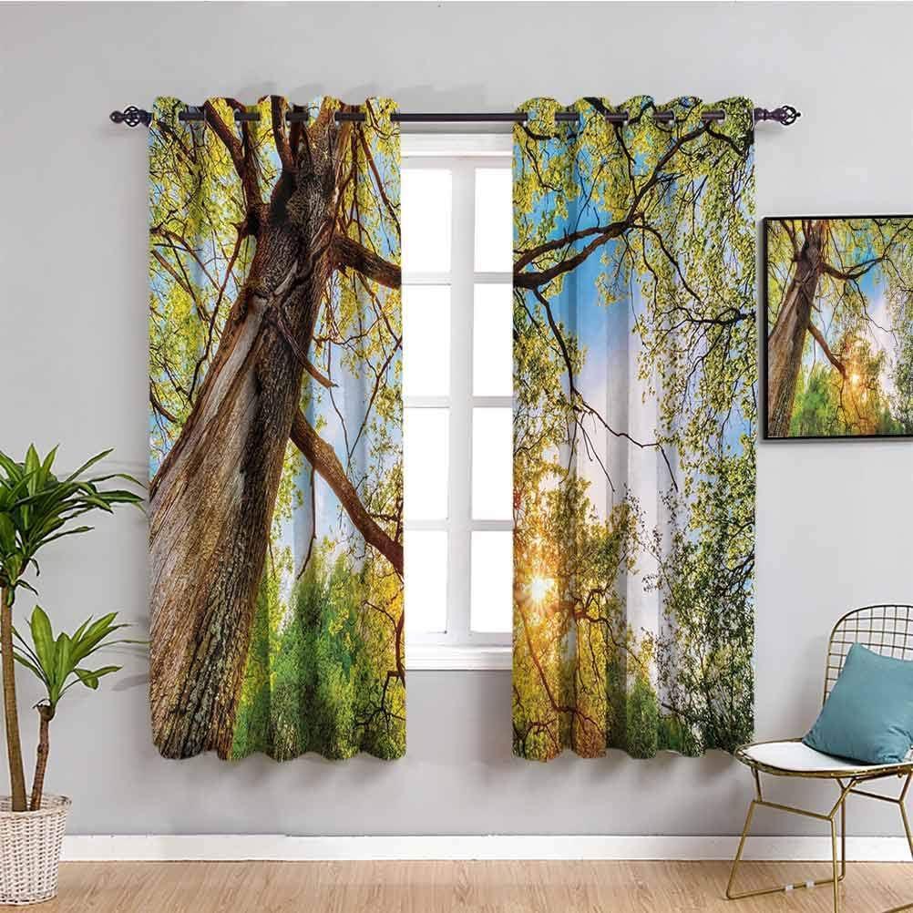 直営限定アウトレット Forest Home Decor Farmhouse 卓出 Curtain Above Lights Summer Vibrant