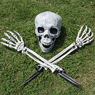 3 Pieces of Halloween Decorative Circuit Breaker Skeleton, Simulating Human Skeleton Model, Joint Skeleton Movable, The Mo...