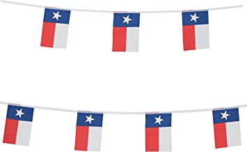 TSMD Texas State Flag Banner,100 Feet Small Mini Texas TX Lone Star Pennant Banner Flags String,Party Decorations Supplies for Bar,School Sports Event,International Festival Celebration